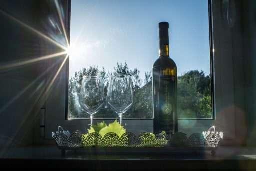Villa Ella 8 Wine tasting